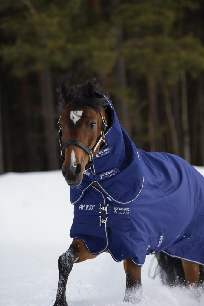Amigo Hero 900 Pony Medium Turnout Rug Plus