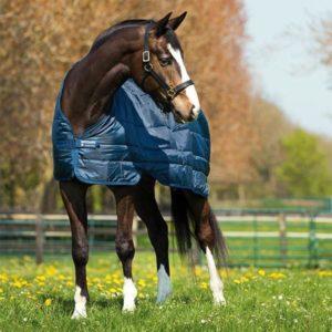 Horseware Liner 400g