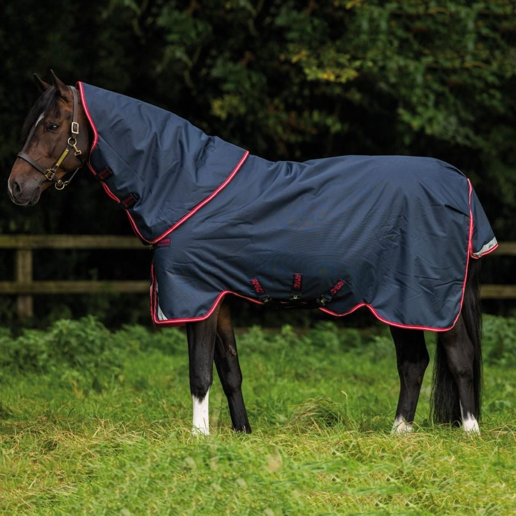 Amigo Bravo 12 Plus Turnout Rug Medium
