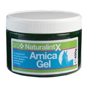 Naturalintx Arnica Gel